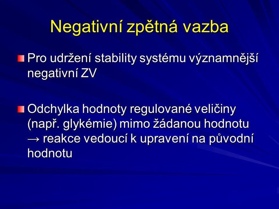 Negativní zpětná vazba