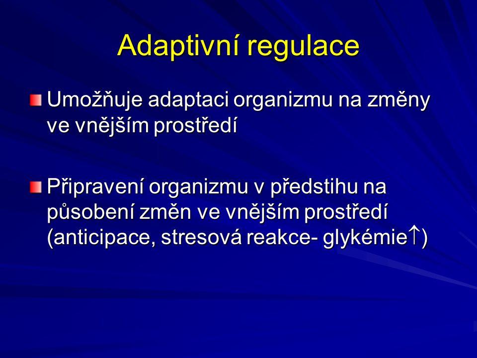 Adaptivní regulace Umožňuje adaptaci organizmu na změny ve vnějším prostředí.