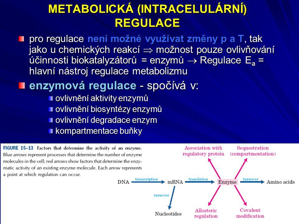 METABOLICKÁ (INTRACELULÁRNÍ) REGULACE