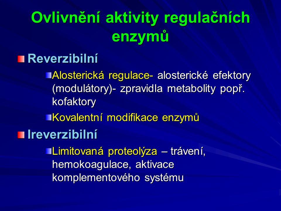 Ovlivnění aktivity regulačních enzymů