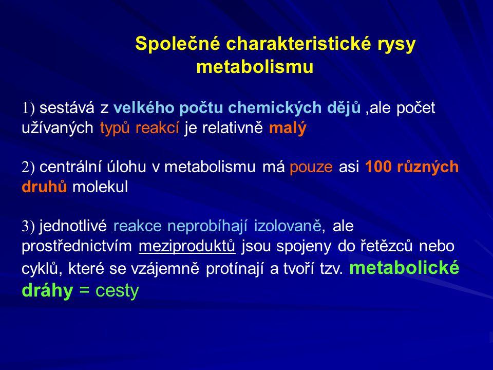 Společné charakteristické rysy metabolismu