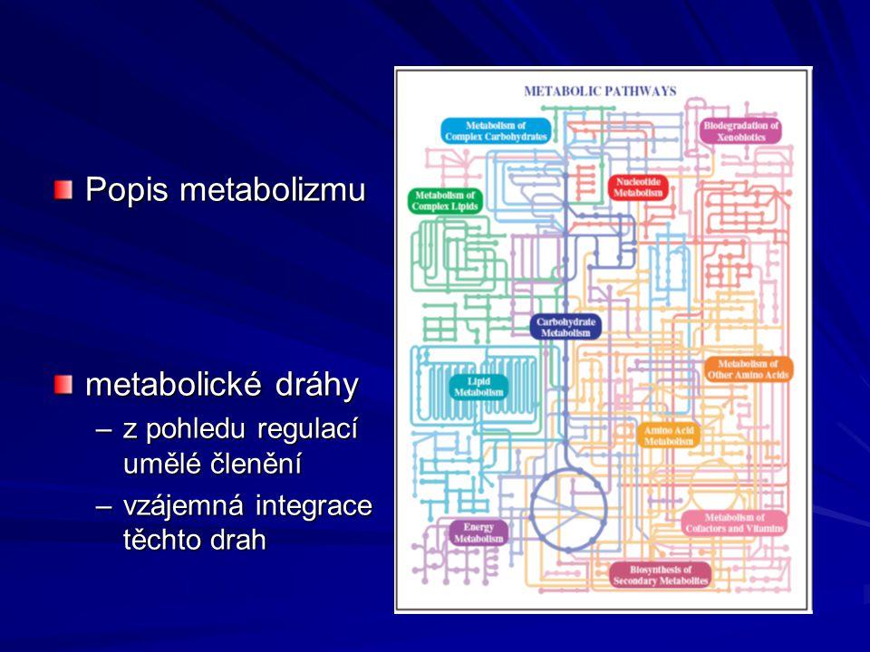 Popis metabolizmu metabolické dráhy z pohledu regulací umělé členění