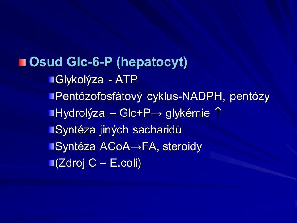 Osud Glc-6-P (hepatocyt)