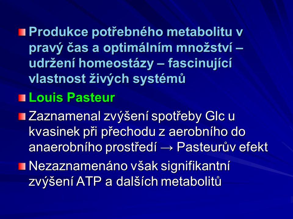 Produkce potřebného metabolitu v pravý čas a optimálním množství – udržení homeostázy – fascinující vlastnost živých systémů