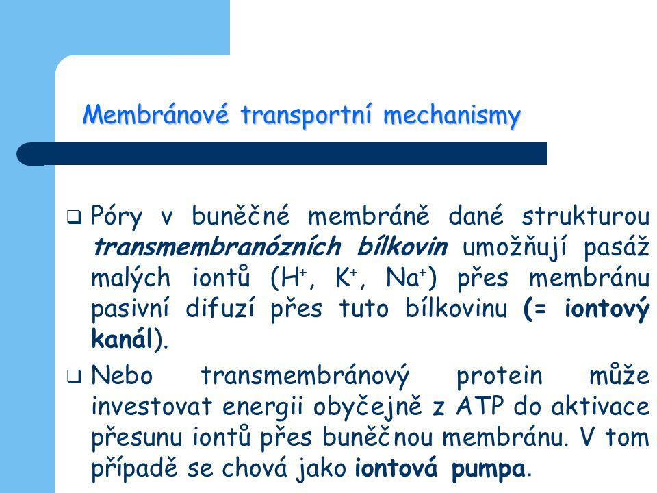 Membránové transportní mechanismy