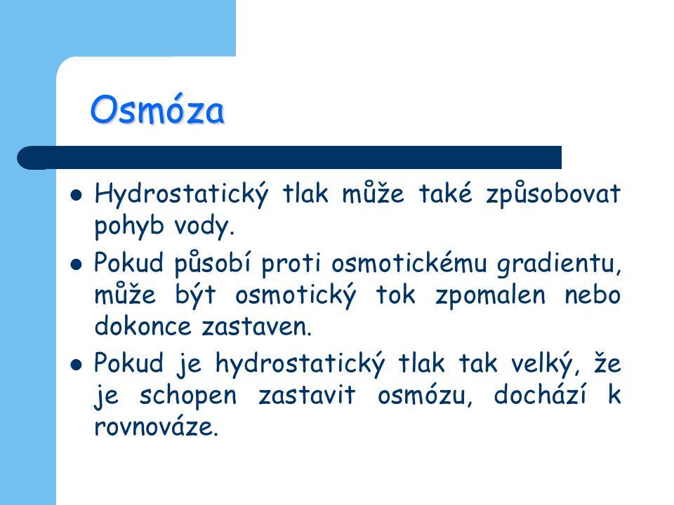 Osmóza Hydrostatický tlak může také způsobovat pohyb vody.