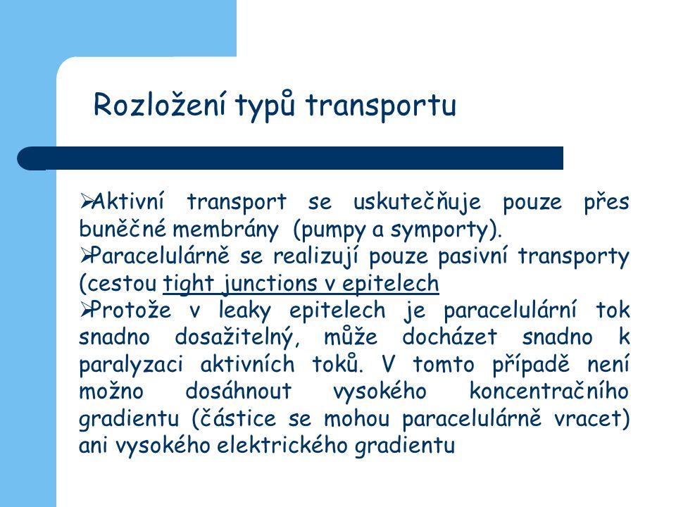 Rozložení typů transportu