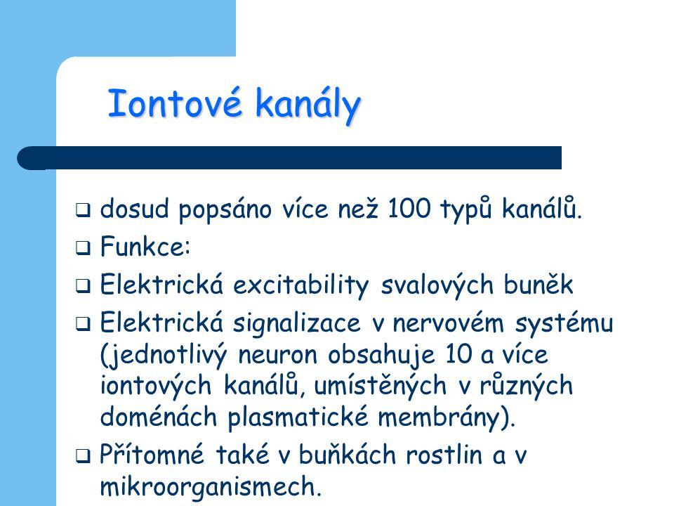 Iontové kanály dosud popsáno více než 100 typů kanálů. Funkce: