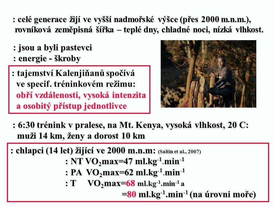 : 6:30 trénink v pralese, na Mt. Kenya, vysoká vlhkost, 20 C: