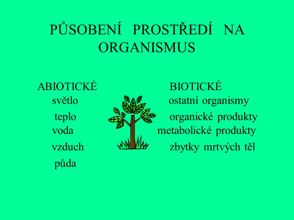 PŮSOBENÍ PROSTŘEDÍ NA ORGANISMUS