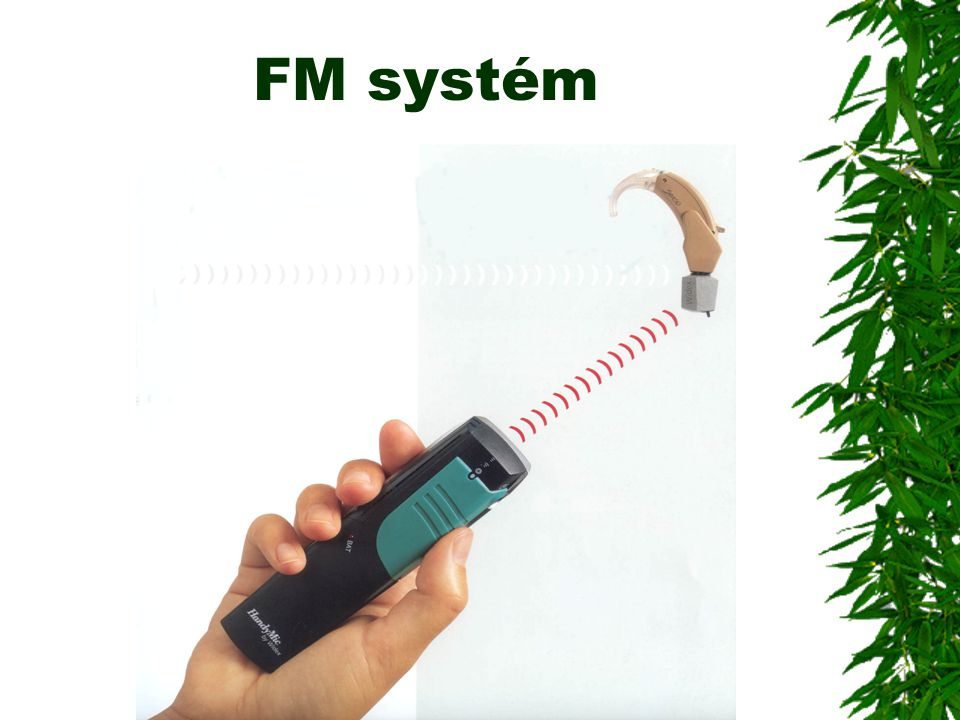 FM systém