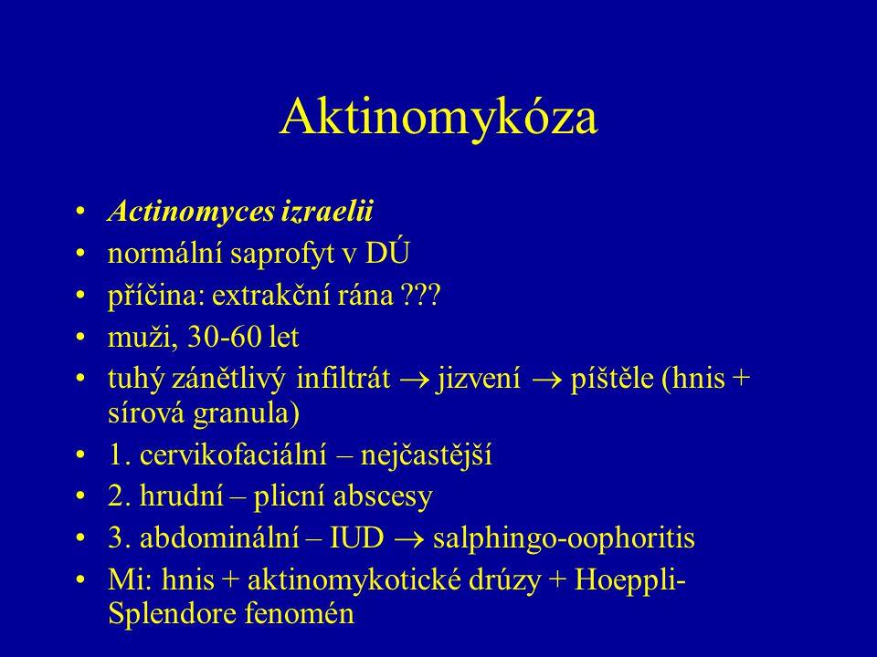 Aktinomykóza Actinomyces izraelii normální saprofyt v DÚ