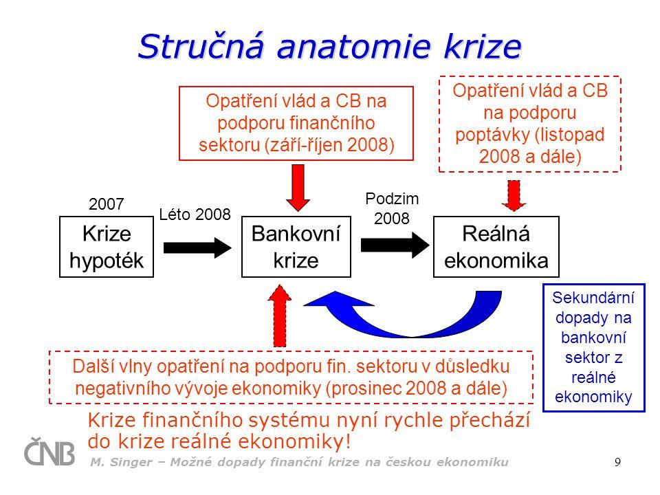 Stručná anatomie krize