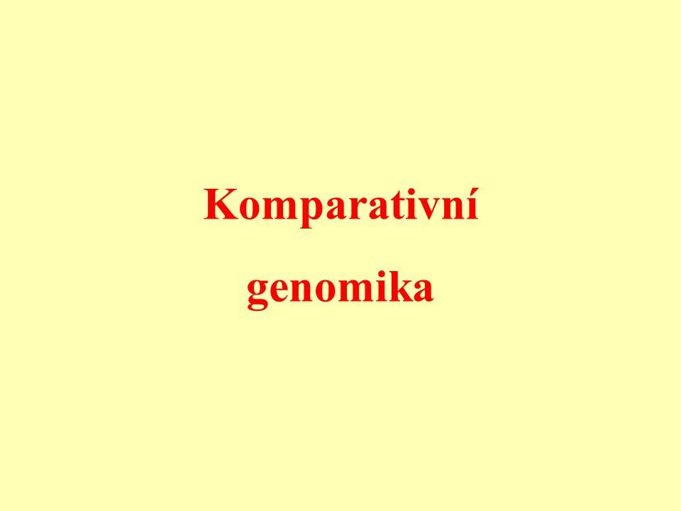 Komparativní genomika