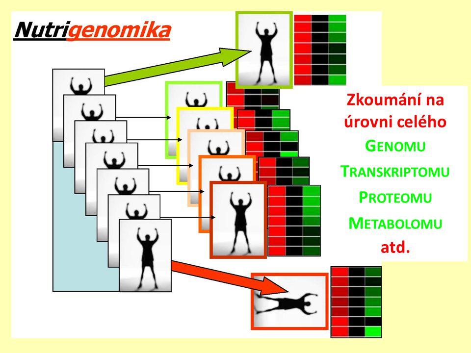 Zkoumání na úrovni celého Genomu Transkriptomu Proteomu Metabolomu atd.