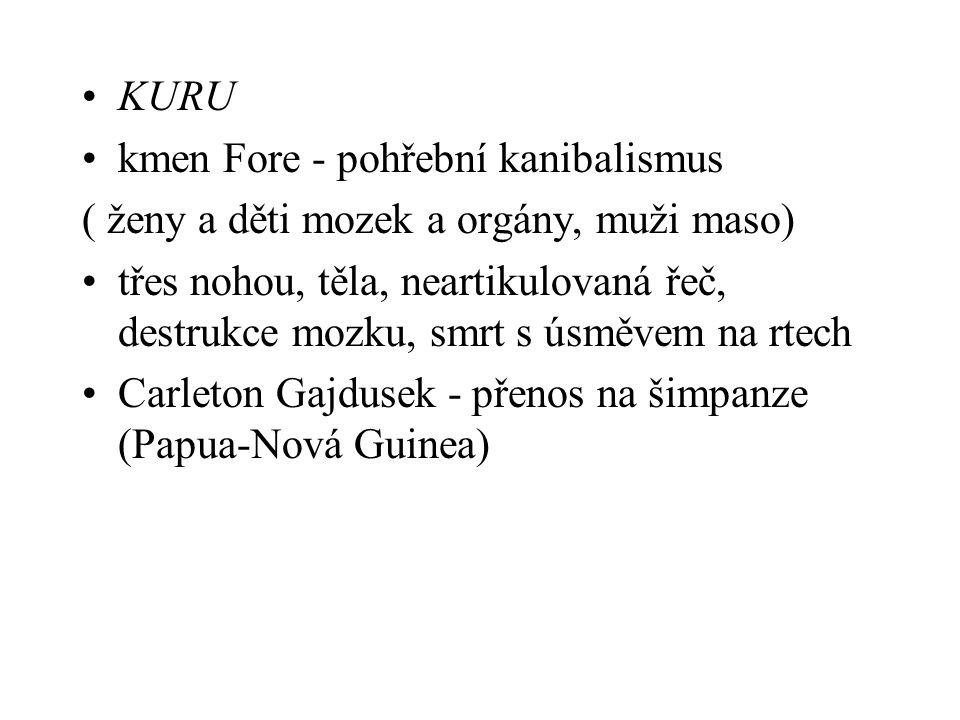 KURU kmen Fore - pohřební kanibalismus. ( ženy a děti mozek a orgány, muži maso)