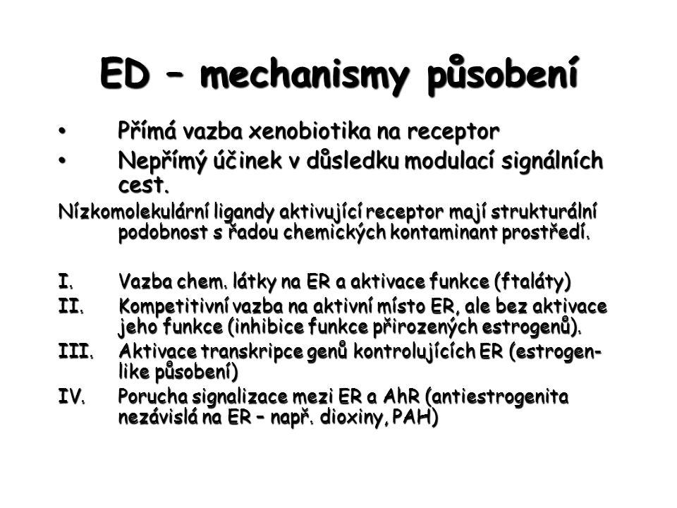 ED – mechanismy působení