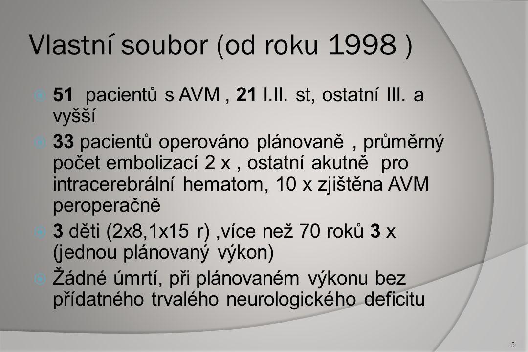 Vlastní soubor (od roku 1998 )
