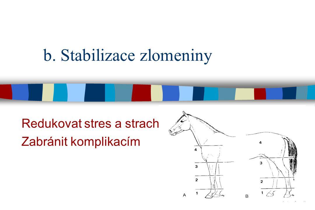 b. Stabilizace zlomeniny