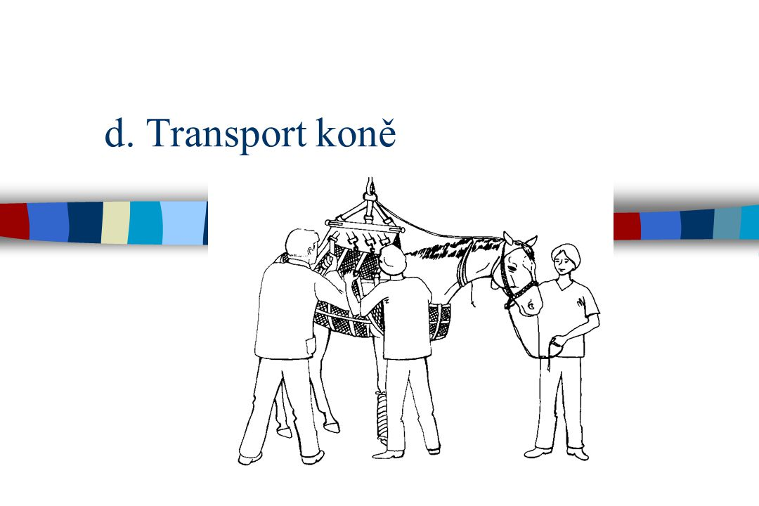 d. Transport koně