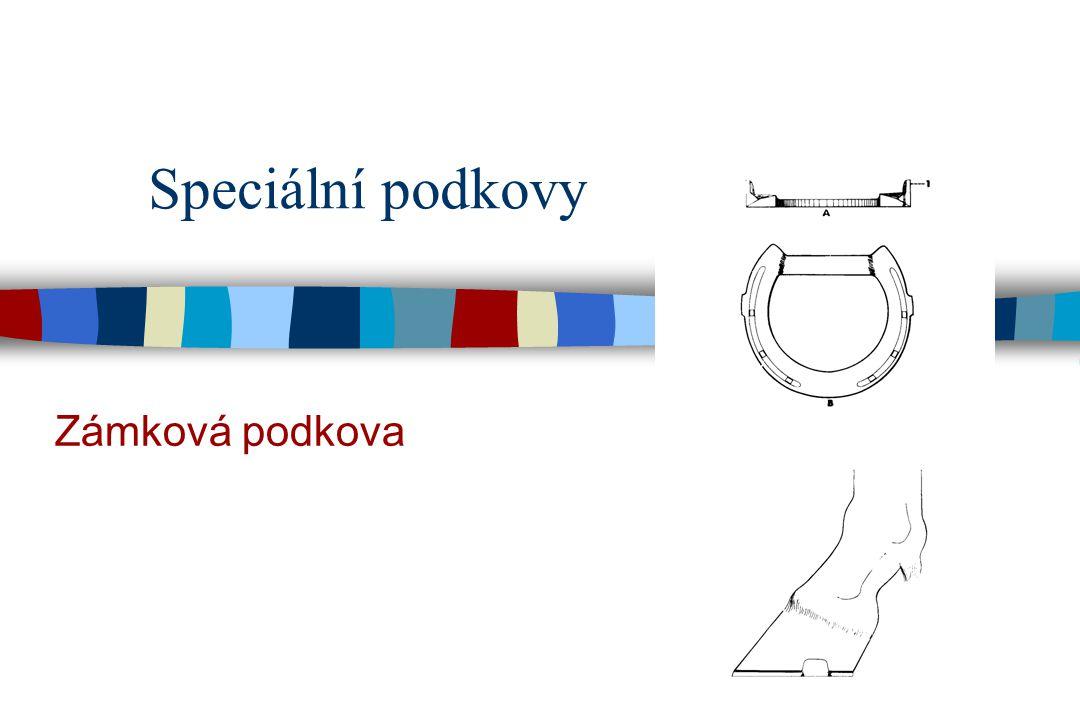 Speciální podkovy Zámková podkova