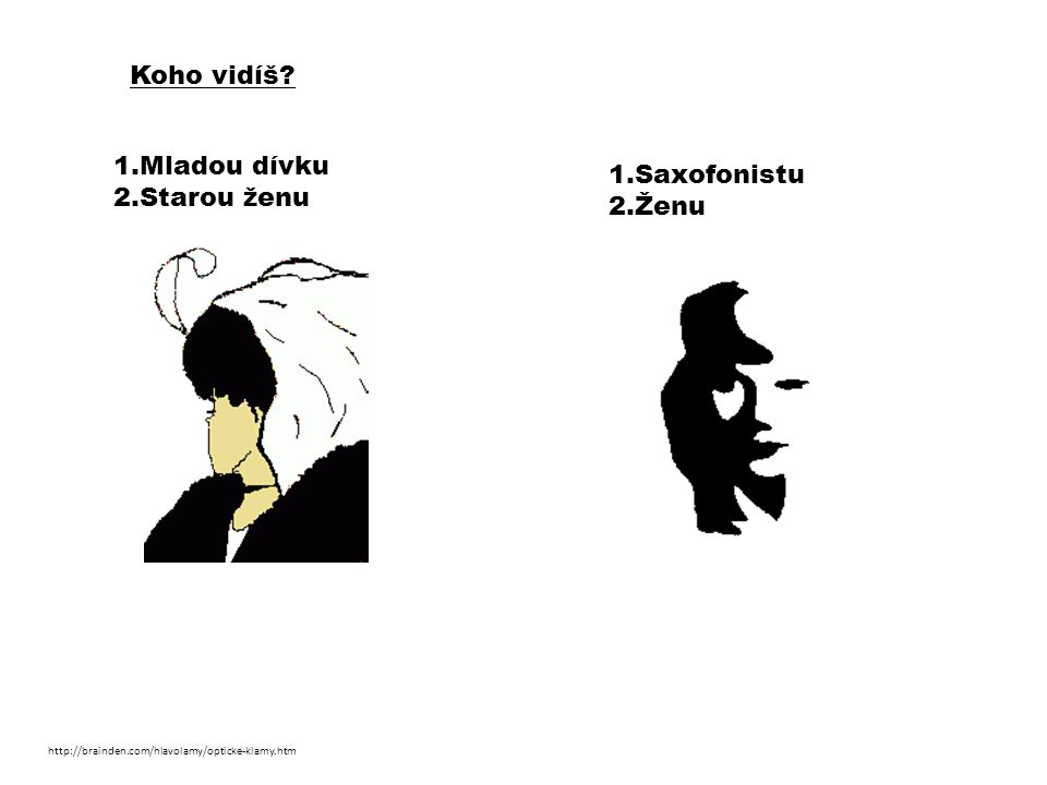 Koho vidíš 1.Mladou dívku 1.Saxofonistu 2.Starou ženu 2.Ženu