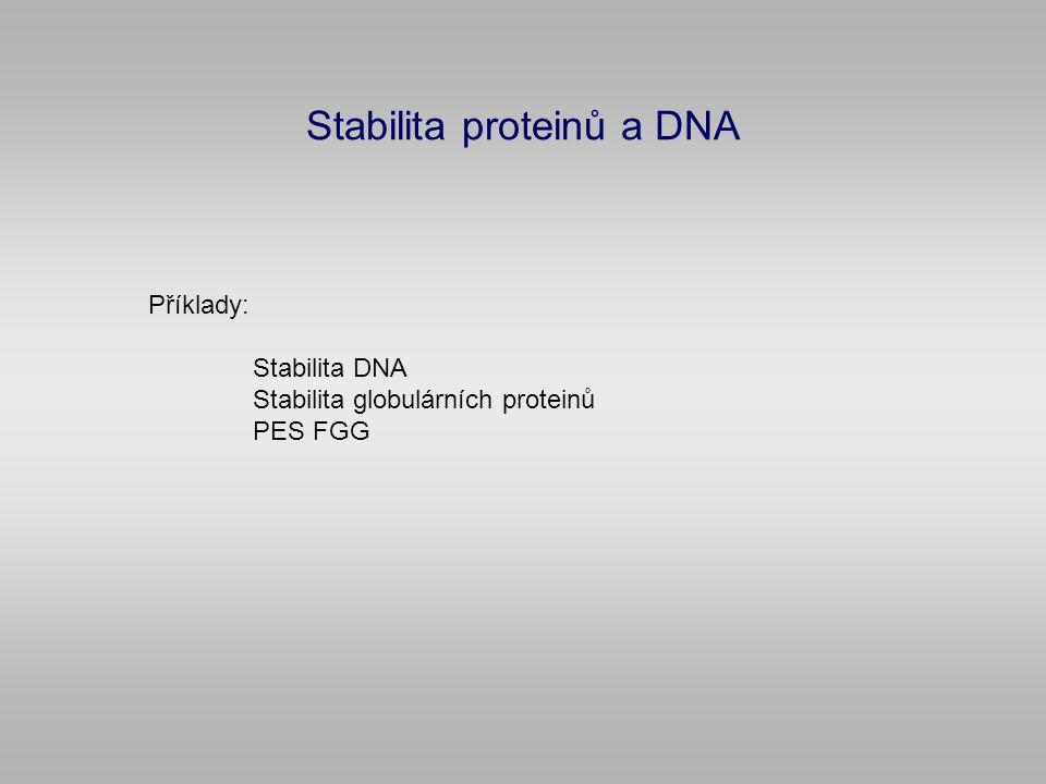 Stabilita proteinů a DNA