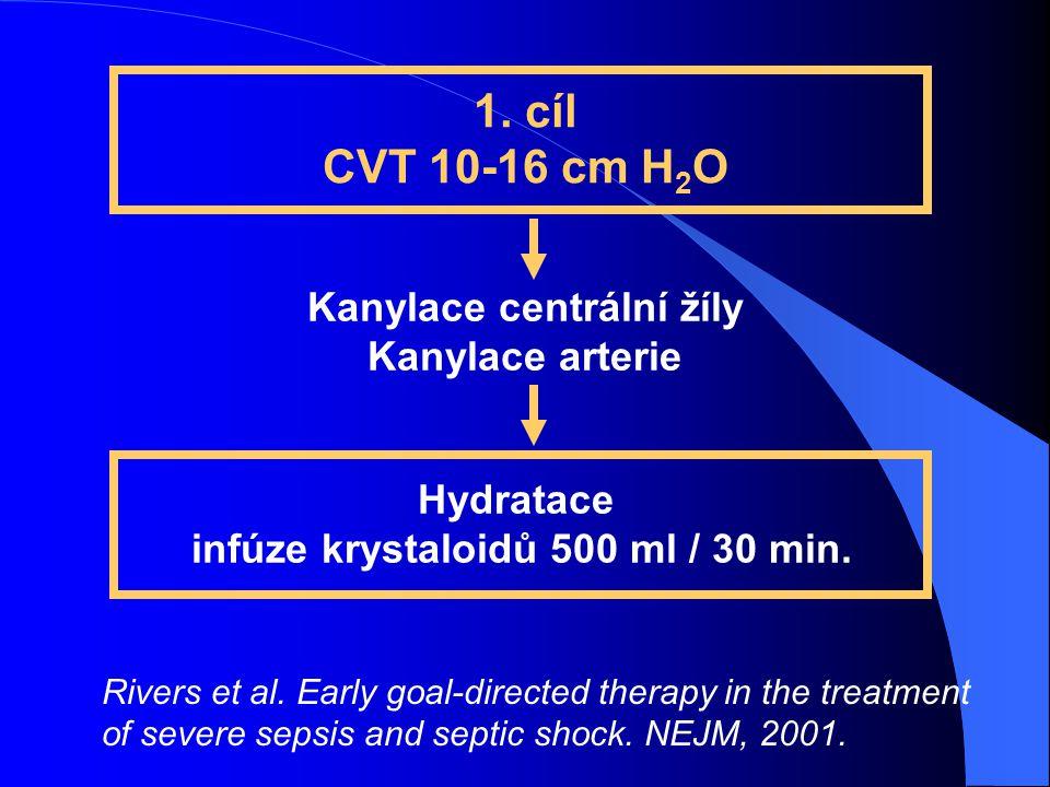 Kanylace centrální žíly infúze krystaloidů 500 ml / 30 min.