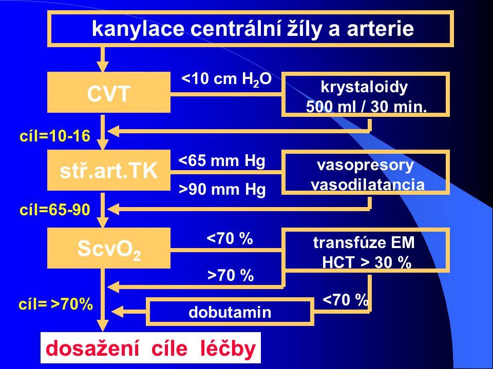 kanylace centrální žíly a arterie