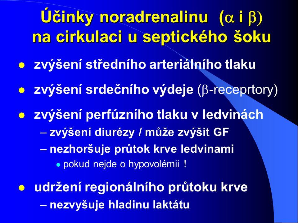 Účinky noradrenalinu (a i b) na cirkulaci u septického šoku