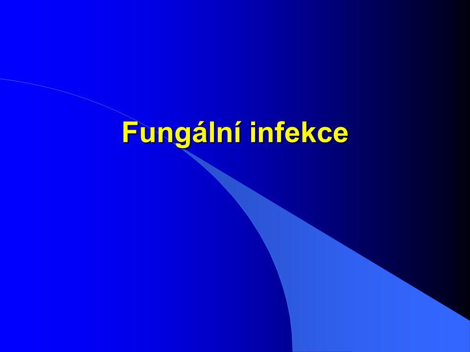 Fungální infekce