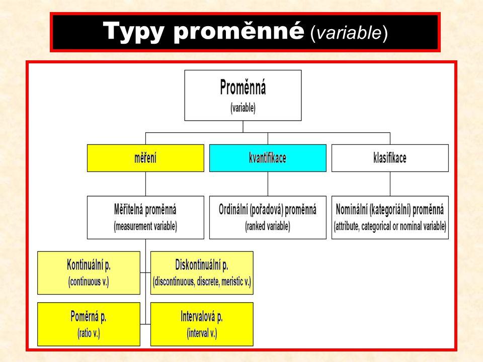 Typy proměnné (variable)