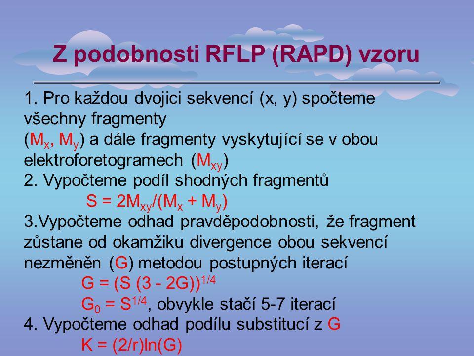 Z podobnosti RFLP (RAPD) vzoru