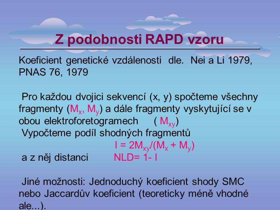 Z podobnosti RAPD vzoru
