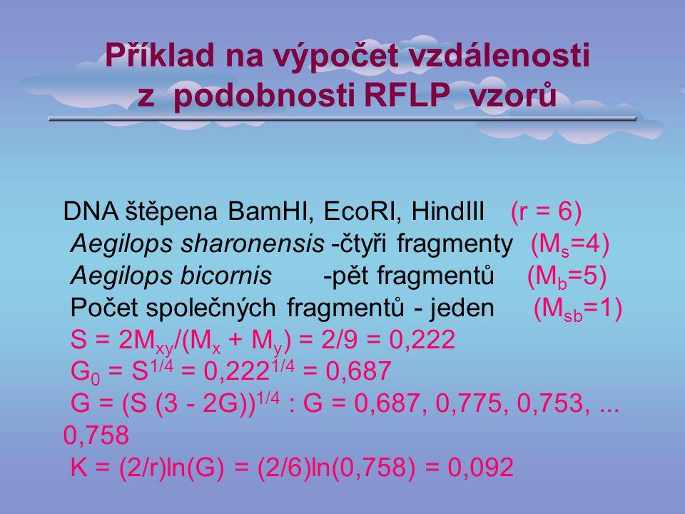 Příklad na výpočet vzdálenosti z podobnosti RFLP vzorů