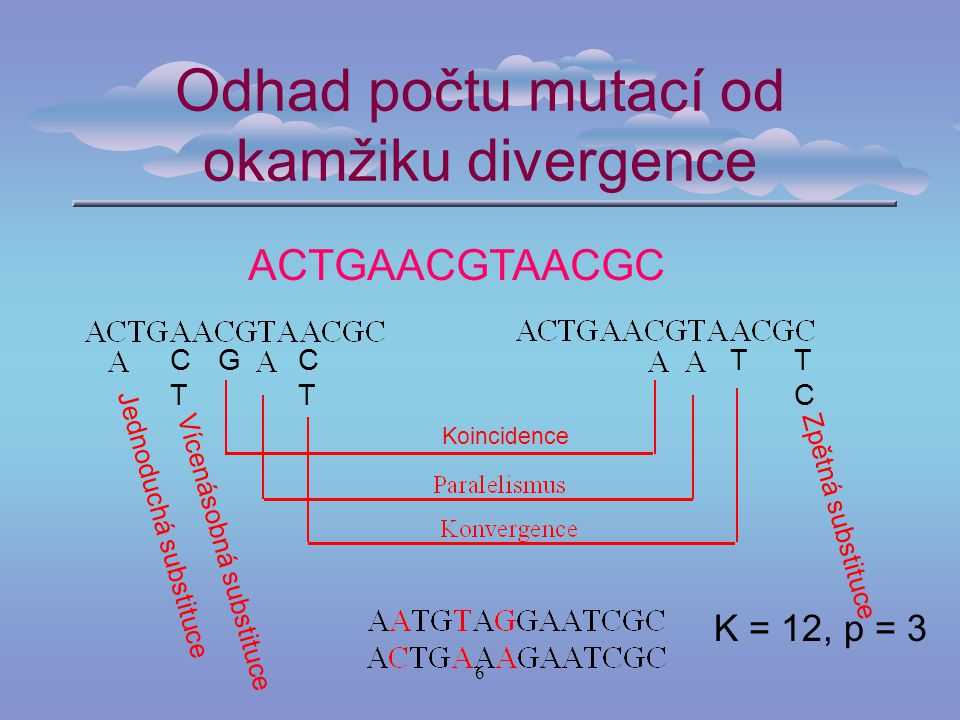 Odhad počtu mutací od okamžiku divergence