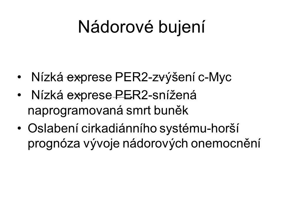 Nádorové bujení Nízká exprese PER2-zvýšení c-Myc