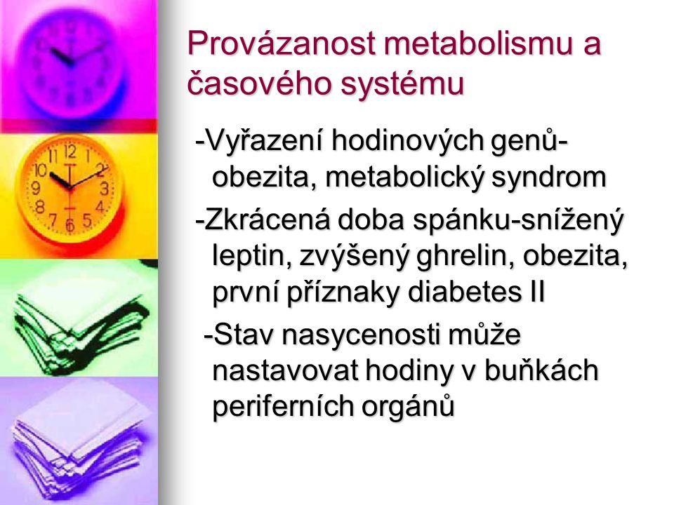 Provázanost metabolismu a časového systému