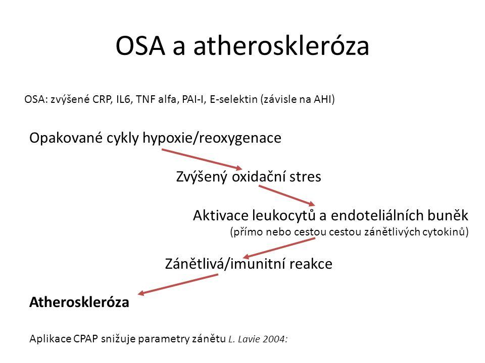 OSA a atheroskleróza Opakované cykly hypoxie/reoxygenace