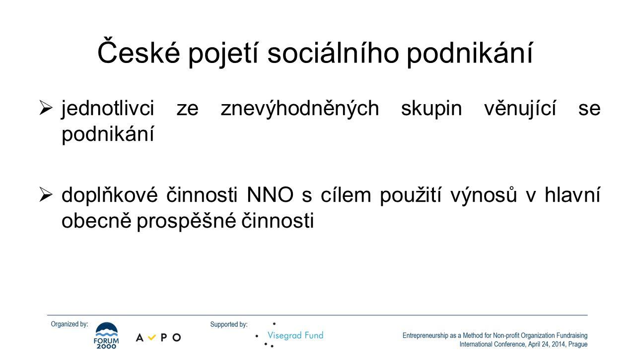 České pojetí sociálního podnikání