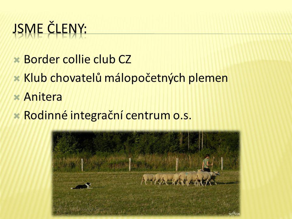 Jsme členy: Border collie club CZ Klub chovatelů málopočetných plemen