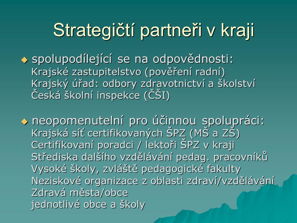 Strategičtí partneři v kraji