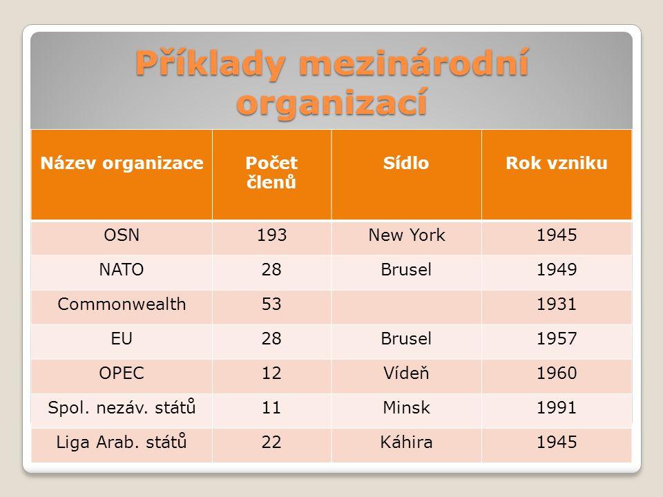 Příklady mezinárodní organizací