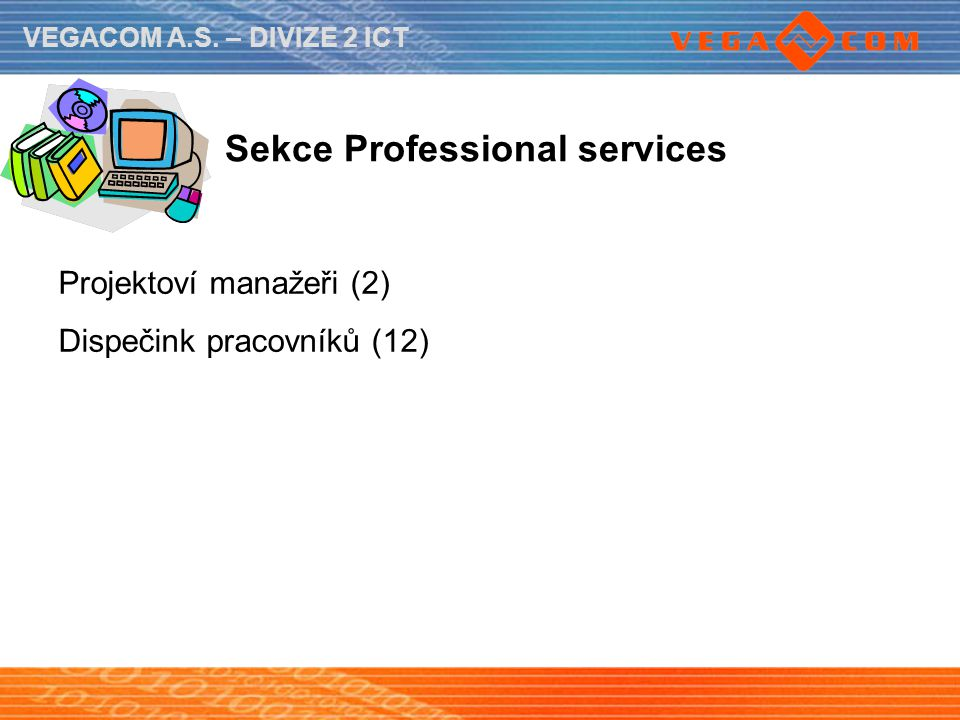 Sekce Professional services