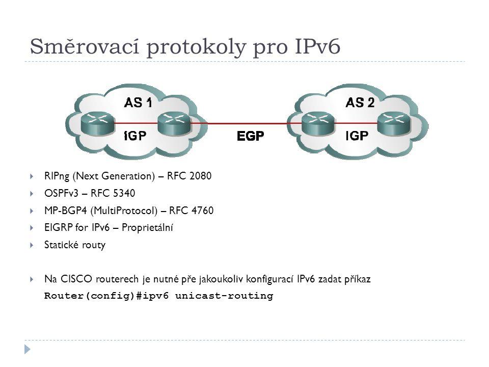 Směrovací protokoly pro IPv6
