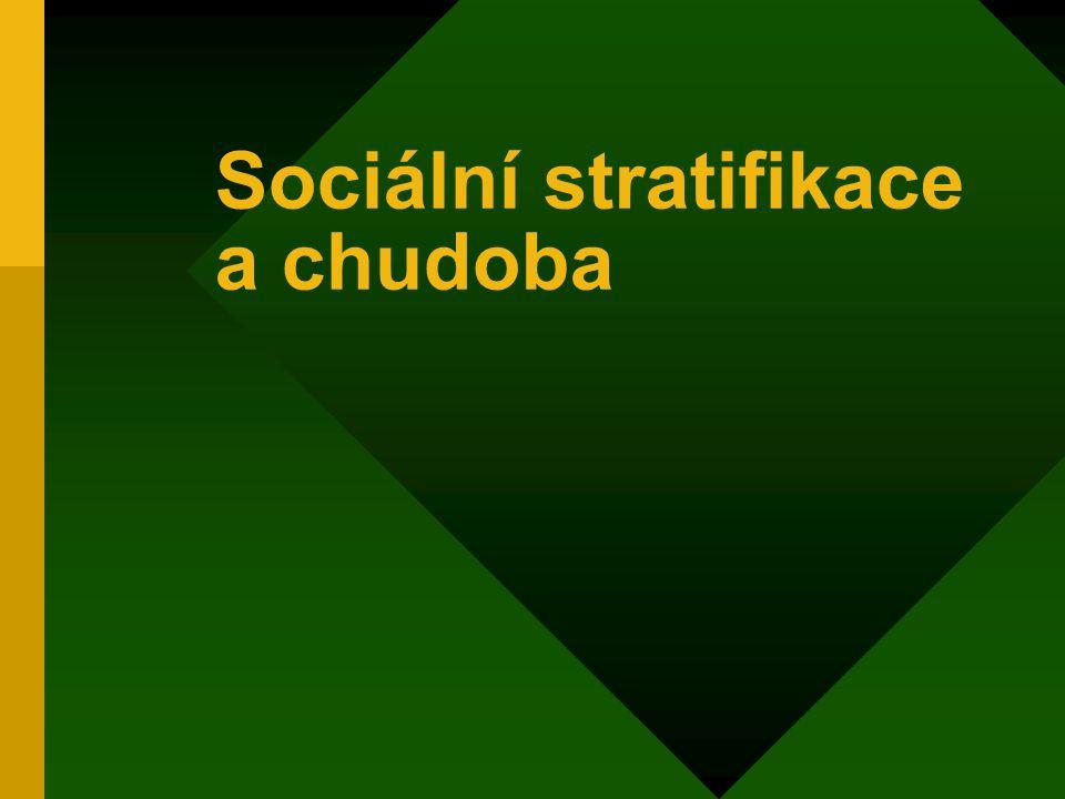 Sociální stratifikace a chudoba