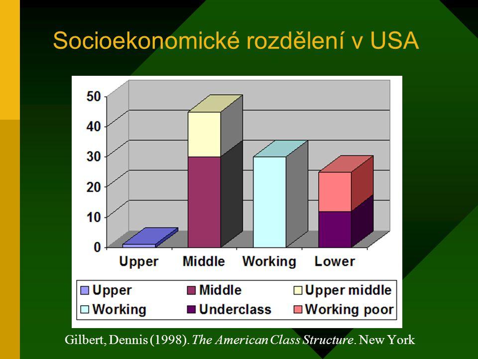Socioekonomické rozdělení v USA