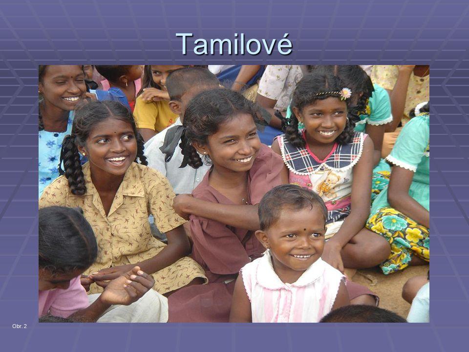 Tamilové Obr. 2