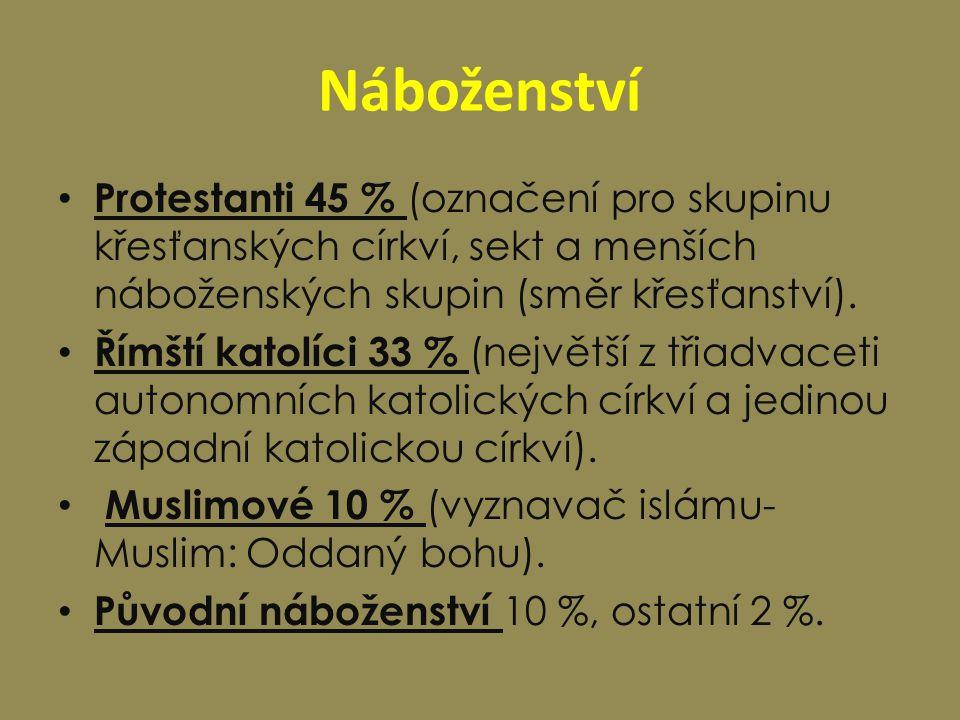 Náboženství Protestanti 45 % (označení pro skupinu křesťanských církví, sekt a menších náboženských skupin (směr křesťanství).