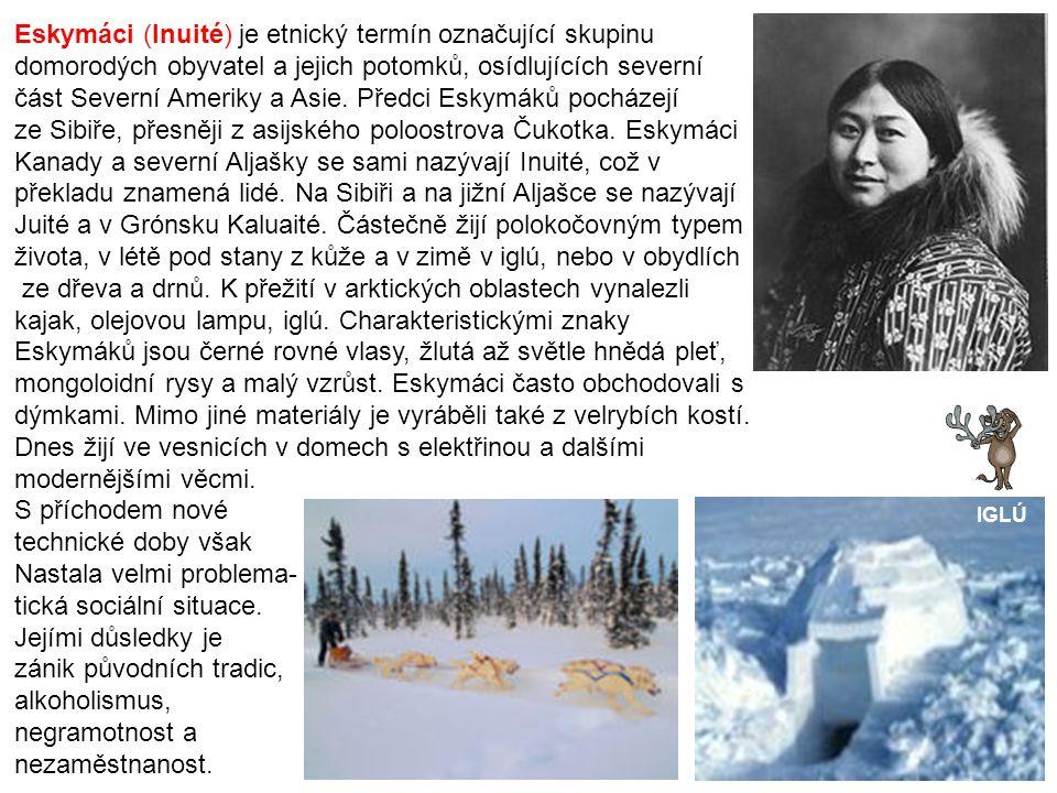 Eskymáci (Inuité) je etnický termín označující skupinu